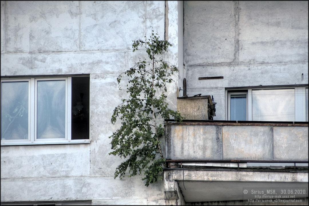 ПИП «Царицыно», 30.06.2020