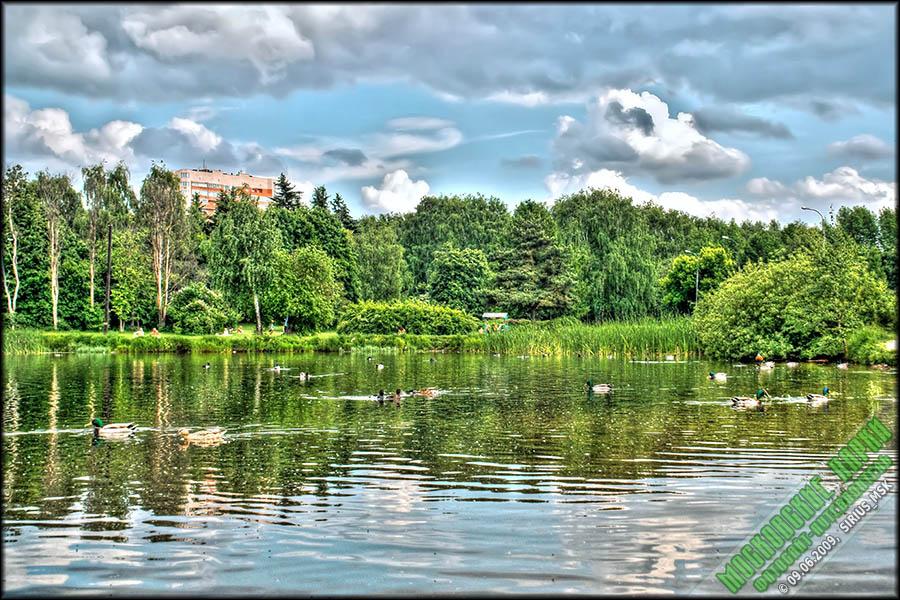 покровское-стрешнево парк рыбалка