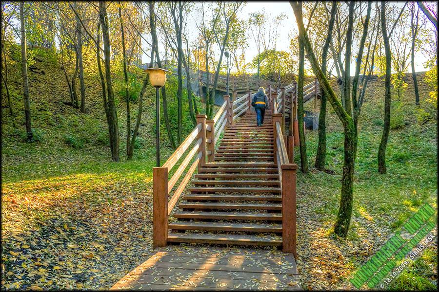 Лестница к озеру своими руками 67